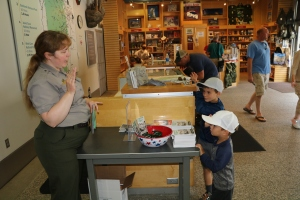 Final step in Junior Ranger Process - Pledge