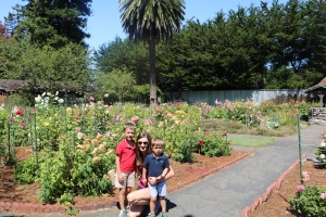 Beautiful Sequoia Gardens