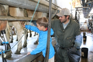 Austin milking a cow. Thanks Daniel for helping boys with some farm chores!
