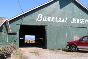 Loved learning about Bancrest Farms - from family ownership to innovation & technology - beautifully well kept acreage with lots of passion & pride.